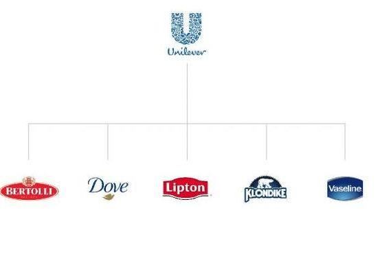 Создание архитектуры брендов. Примеры, описание