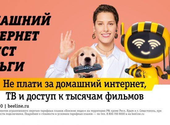 Домашний интернет против домашнего щенка: «Билайн» и Contrapunto выяснили, кто ест деньги